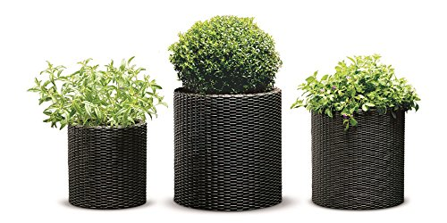 Keter Round Cylinder Plastic Rattan Resin Garden Flower Plant Planters Decor Pots 3 pc Set, assorted sizes, Brown (Garden Rattan)