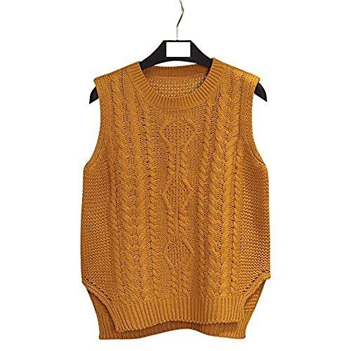 樹皮インスタントチューインガムformanism カジュアル 暖か ニット セーター 編み ラウンドネック カラバリ キレイめ ベスト レディース
