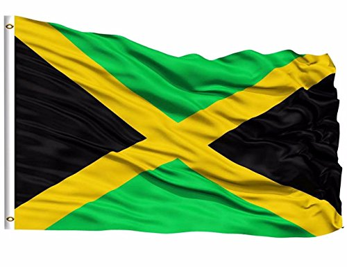 DFLIVE Jamaica Flag 3x5 ft Printed Polyester Fly Jamaican National Flag Banner with Brass Grommets