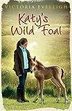 Katy's Wild Foal: Katy's Exmoor Ponies 1