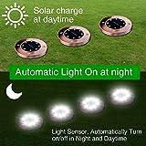 Lumina Bright Solar LightsOutdoor, Newfen 8Pack