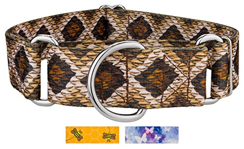 Country Brook Petz | 1 1/2 Inch Rattlesnake Martingale Dog Collar - Extra Large