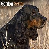 Gordon Setter Calendar - Breed Specific Gordon Setter Calendar - 2015 Wall calendars - Dog Calendars - Monthly Wall Calendar by Avonside