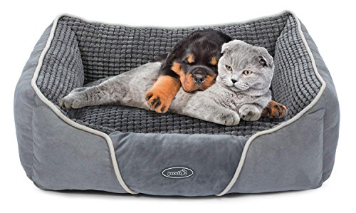 Dog Bed Cat Pet Bed Machine Washable Luxury Rectangle Bed with Soft Detachable Cushion for Small Medium Pet by Pecute