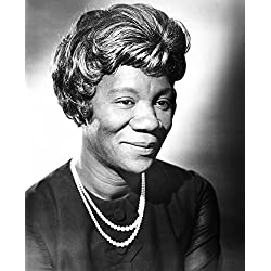 Guess WhoS Coming To Dinner Beah Richards 1967 Photo Print (16 x 20)