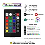 LOFTEK LED Light Ball: 6-inch RGB Lamp with Remote, 16 Colors Changing Cool Mood Lamp, IP65 Waterproof Floating Pool Lights, 5V Fast USB Charging Glow Night Light, Perfect for Nursery or Decor Use