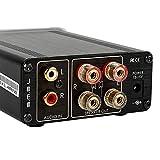 SMSL SA-36A Pro 20WPC TPA3118D2 Digital Amplifier