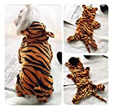 ZCNNO Pet Halloween Costume for Dog,Pet Costume Hoodie Coat for Dogs and Cats,pet Warm Apparel,Cute Hoodies Dog Outfits,pet Winter Clothes,Iron Man and Tiger,for Holiday and Party Suit (Size : M)