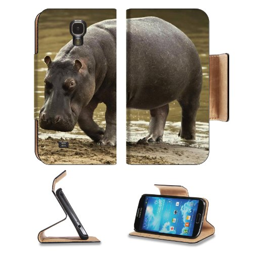 Hippopotamus Beach Water Gray Huge Samsung Galaxy S4 Flip Cover Case with Card Holder Customized Made to Order Support Ready Premium Deluxe Pu Leather 5 inch (140mm) x 3 1/4 inch (80mm) x 9/16 inch (14mm) Liil S IV S 4 Professional Cases Accessories Open Camera Headphone Port I9500 LCD Graphic Background Covers Designed Model Folio Sleeve HD Template Designed Wallpaper Photo Jacket Wifi 16gb 32gb 64gb Luxury Protector Micro SD Wireless Cellphone Cell Phone