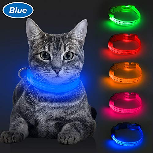 BSEEN LED Dog Collar, USB Rechargeable Light Up Pet Collar for Small Dog, Glowing Safety Cat Collar with Adjustable Nylon Webbing High Visibility for Dogs & Cats (Blue) (Cat Collar Glow)