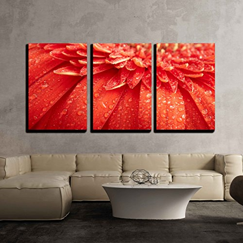 Red Daisy Gerbera with Waterdrops x3 Panels