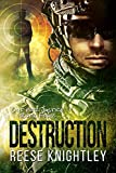 Destruction (Out for Justice Book 4)