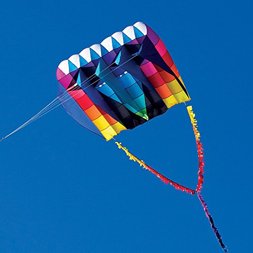 Into The Wind UltraFoil 30 Kite by Into The Wind (Image #1)