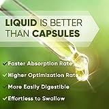 Chaparral Alcohol-Free Liquid Extract, Organic