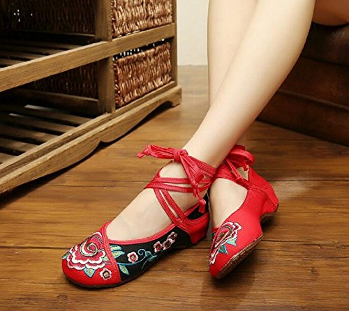 Lazutom - Zapatos de cordones de Lona para mujer Red