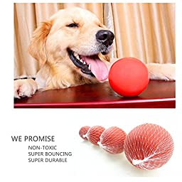 AlinkZ Dog Toys Set Pet Ball Rope and Chew Bell Toys for Small Medium Dog (Set of 6)