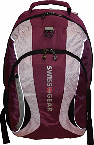 SwissGear Mercury Backpack Laptop Raspberry