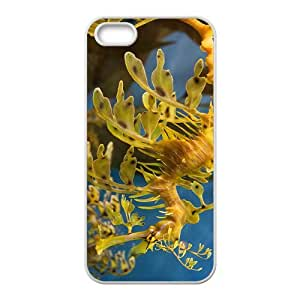 Syngnathus Hight Quality Plastic Case for Iphone 5s