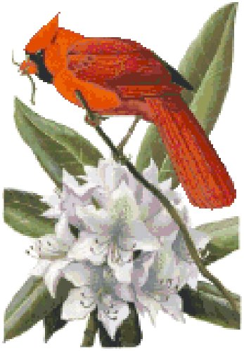 West Virginia State Bird (Northern Cardinal) and Flower (Rhododendron) Counted Cross Stitch Pattern