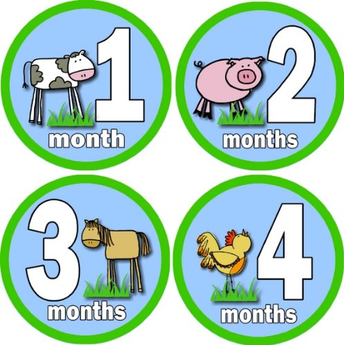 Rocket Bug Monthly Growth Stickers, Farm Animals Baby