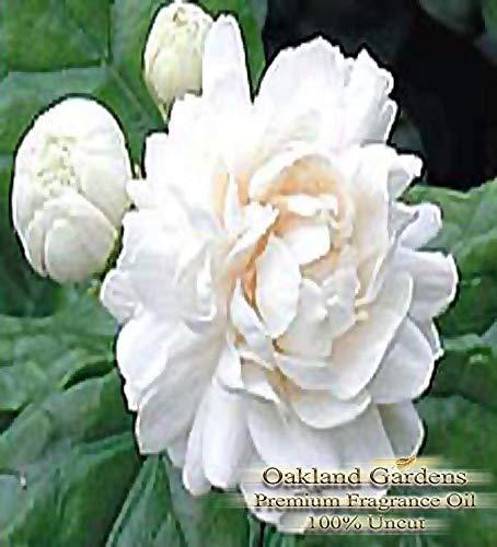 (P) Pikake Flowers Reed Sticks & Diffuser Oil by OG - Tropical Rich, Lush Floral Blend of pikake, Jasmine and Gardenia (2 oz (60 ml))