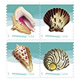 USPS Seashells Postcard Stamps - (20 Sheets of 20 Stamps)