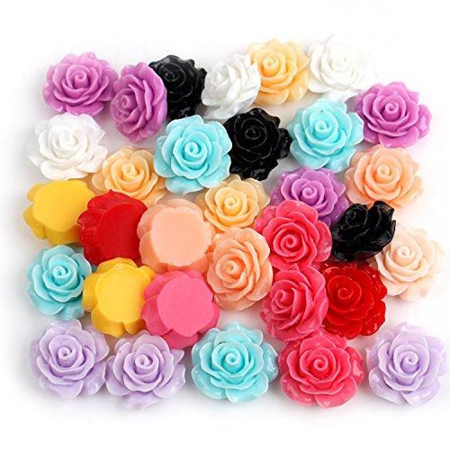Dr.Luck 55Pcs DIY Mixed Lots Resin Rose Flowers Cabochons Cameo Flat Back 18x9mm (Random)