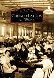 Chicago Latinos at Work, Wilfredo Cruz, 0738577936