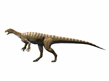 Amazon テコドントサウルスLate...