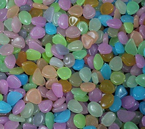 ZHJZ® - Piedras luminosas para adornos de yarda, pecera, decoración de tanque (20 unidades): Amazon.es: Hogar