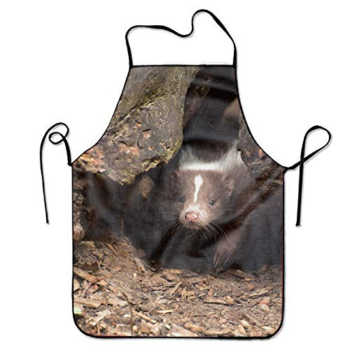 doormatscool Nice Skunk Apron Bib Save-All Chef Apron Tailgate Grilling Prepare for Family Man One Size Drill