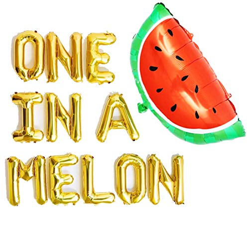One in a Melon Balloons Watermelon 1st Theme First Birthday Banner Party Supplies Decorations