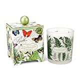 Michel Design Works Gift Boxed Soy Wax Candle, 14-Ounce, Papillon