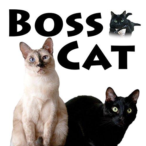 - Boss Cat