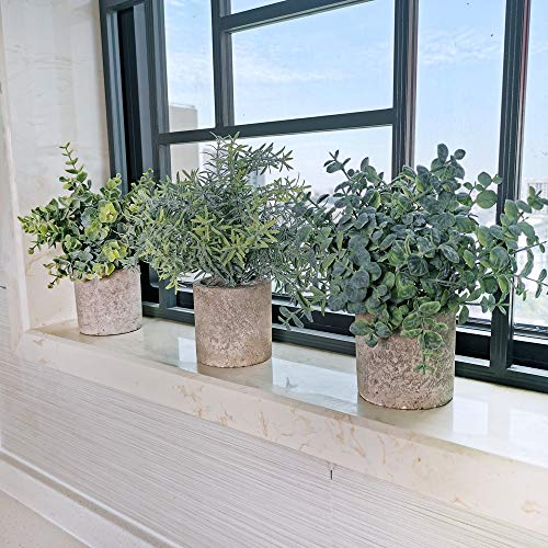 Winlyn Set of 3 Mini Potted Artificial Eucalyptus Plants Plastic Fake Green Rosemary Plant for Home Decor Office Desk… 4