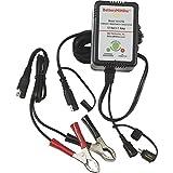 BatteryMINDer Model 12117: 12 Volt 1.33 Amp