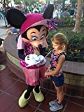 Disneys Princess Decorate Your Own Autograph Book Kit