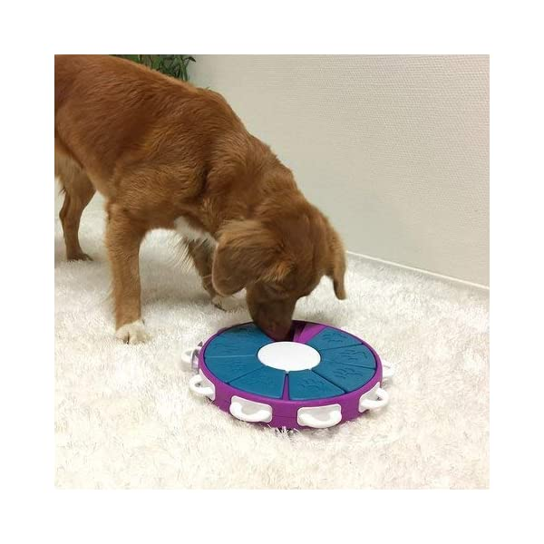 Nina Ottosson Dog Twister Activity Toy 3