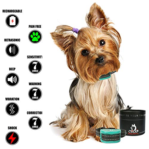 Our K9 Training Made Easy product image