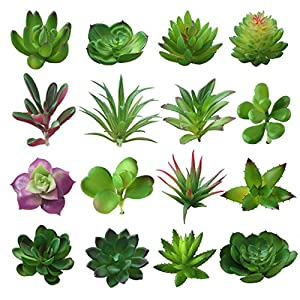 BTSD-home 16 Pcs Mixed Artificial Succulent Flowers Plants Unpotted Decor Stems Fake Succulents Plants Bulk Assorted Picks for Home Decor Indoor Wall Garden DIY Decorations 3