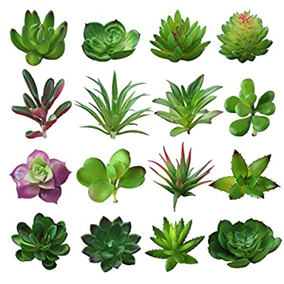 """BTSD-home 16 Pcs Mixed Artificial Succulent Flowers Plants Unpotted Decor Stems Fake Succulents Plants Bulk Assorted Picks for Home Decor Indoor Wall Garden DIY Decorations - Package include: 16 pcs different artificial succulents, unpotted Size: about 4-9cm/1.5""""- 3.5"""" in width, the branches under the plant can be trimmed according to your needs Made of PVC plastic, durable and have a long lifespan, beautiful shapes with bright color - living-room-decor, living-room, home-decor - 51lYSD91U4L. SS400  -"""