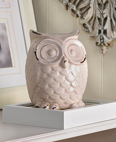(Accent Plus 10015684 Wide-Eyed Glazed White Owl Statue, Multicolor)