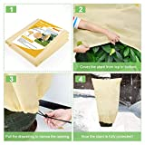 Deyard 2Pack Plant Freeze Protection Covers, Winter Plant Frost Cover Blanket Jacket for Plants Trees Shrub with Drawstring, Upgraded Thickness Plant Cover for Winter