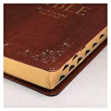 KJV Holy Bible, Standard Bible, Burgundy Faux