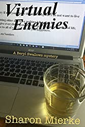VIRTUAL ENEMIES: A Beryl Swallows mystery (Book one)