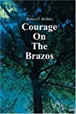 Courage on the Brazos, Robert J. Beddoe, 0595210287