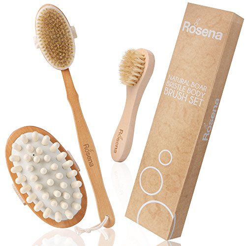 Dry Brushing Body Brush Set - Best for Skin Natural Exfoliating, Cellulite & Lymphatic Drainage | Kit Includes Face Brush, Fascia Massager & Long Handle Back Scrubber for Shower & (Maximum Healthy Skin Kit)