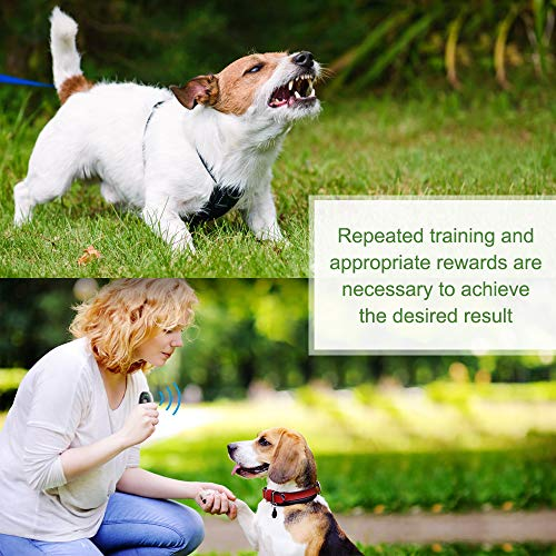 Modus Anti Barking Device Ultrasonic Dog Bark Deterrent