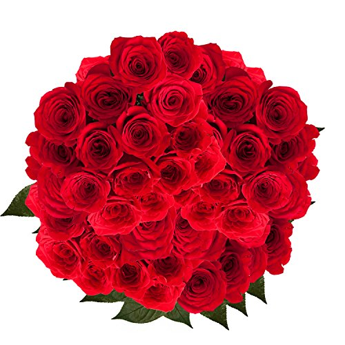 GlobalRose 100 Red Roses- Beautiful Fresh Flowers- Lovely Bright Blooms (Roses 100 Red)