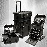 ZEN 3000 Pro Series Makeup Case / Organizer / Cosmetic Case